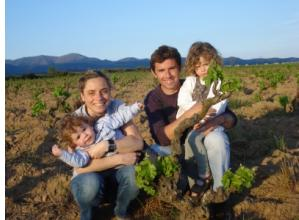 Descobre las Vi�as centenarias de cultivo ecol�gico de Roig Parals