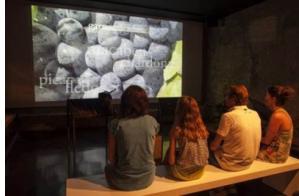 Visita al museo Coll de Roses, Wine Family Museum, y cata de vinos